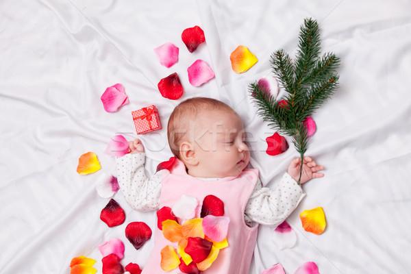 Imagine de stoc: Copil · petale · de · trandafir · ramură · alb