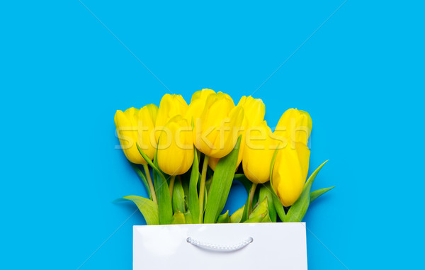 Köteg citromsárga tulipánok hideg bevásárlószatyor csodálatos Stock fotó © Massonforstock