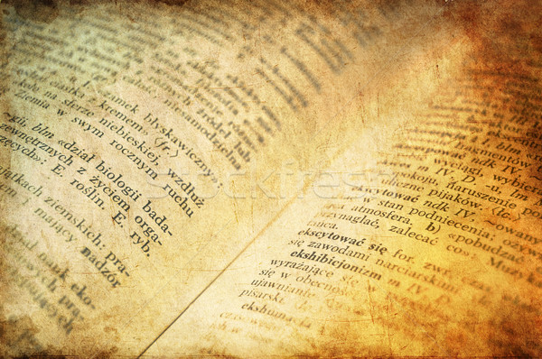 Old Polish dictionary.  Stock photo © Massonforstock