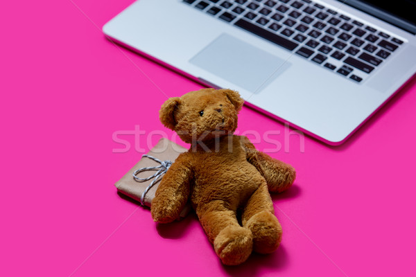beautiful small gift, cute teddy bear and cool laptop on the won Stock photo © Massonforstock