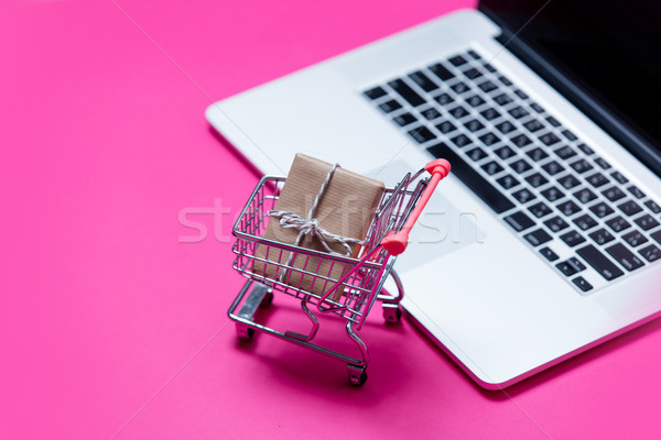beautiful small gift in shopping cart and cool laptop on the won Stock photo © Massonforstock