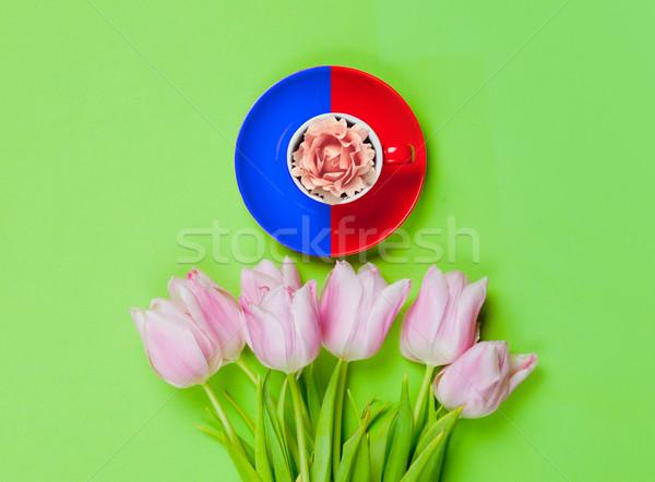 Virág csésze köteg gyönyörű tulipánok csodálatos Stock fotó © Massonforstock