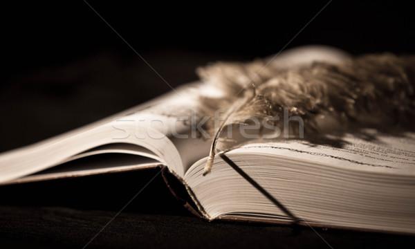 Pióro starej książki Fotografia starych vintage stylu Zdjęcia stock © Massonforstock