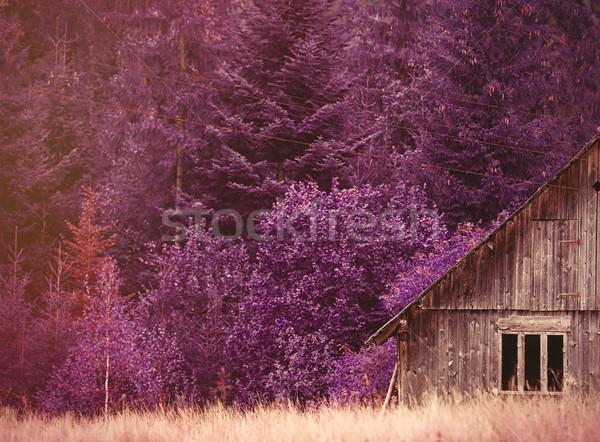 ストックフォト: 古い家 · ウクライナ · 山 · 写真 · バイオレット