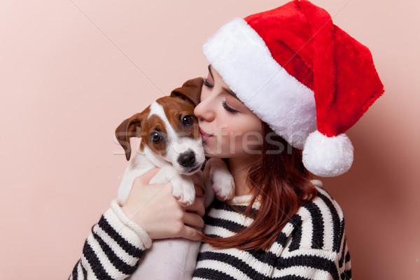 女性 子犬 肖像 小さな 赤毛 サンタクロース ストックフォト © Massonforstock