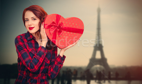Hermosa regalo maravilloso Eiffel Tower Foto stock © Massonforstock