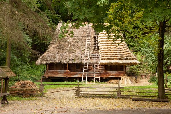 美しい 表示 村 家 建物 素晴らしい ストックフォト © Massonforstock