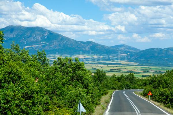 Fotó gyönyörű aszfalt út csodálatos mező Stock fotó © Massonforstock