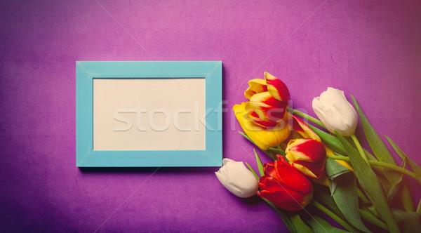 Bouquet tulipani photo frame bella viola fiore Foto d'archivio © Massonforstock