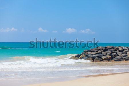 tropical coast line  Stock photo © Massonforstock