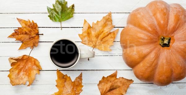 Cup and pumpkin with leafs Stock photo © Massonforstock