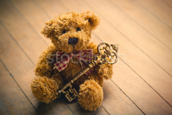 cute fluffy teddy bear with golden key on the wonderful brown wo Stock photo © Massonforstock