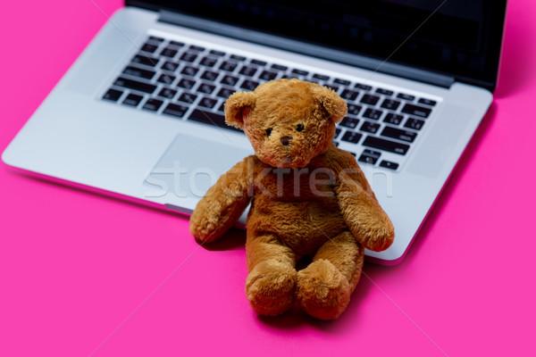 Belle cute Nounours cool portable merveilleux Photo stock © Massonforstock