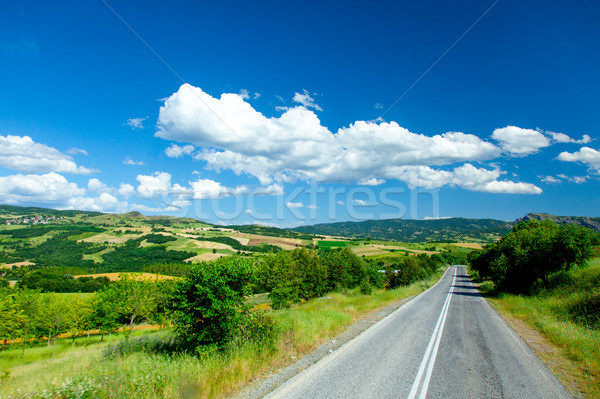 photo of the beautiful asphalt road in front of wonderful huge f Stock photo © Massonforstock