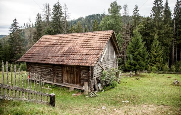 Old house in Ukrainian Carpathian  Stock photo © Massonforstock