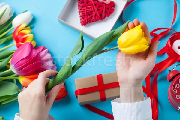Stock fotó: Női · kezek · tart · tulipán · virág · tavasz