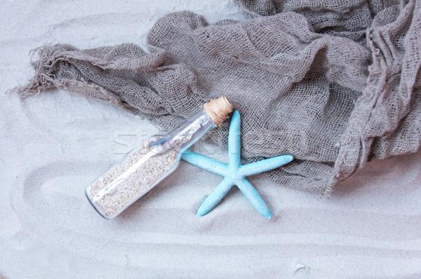Mooie souvenir zeester cool visnet prachtig Stockfoto © Massonforstock