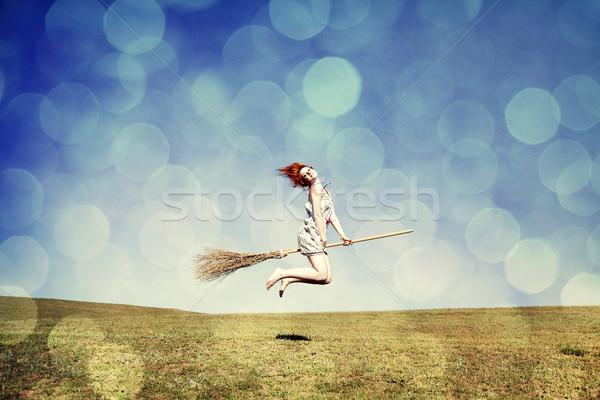 Jonge heks bezem vliegen groen gras veld Stockfoto © Massonforstock