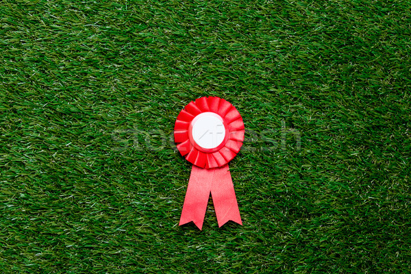 Little red winner award on green summer grass lawn Stock photo © Massonforstock