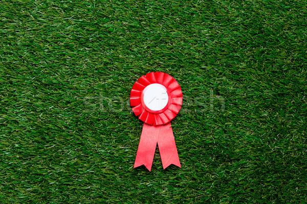 Peu rouge gagnant attribution vert été Photo stock © Massonforstock