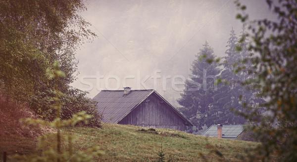 古い家 ウクライナ 木材 山 山 フォーク ストックフォト © Massonforstock