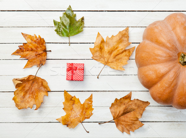 Pumpkin and leafs with gift box Stock photo © Massonforstock