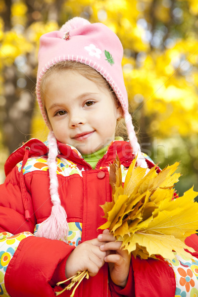 Child in autumn park.  Stock photo © Massonforstock