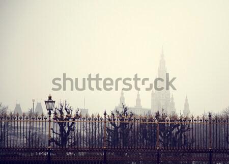 Kilátás templom Bécs Ausztria épület nyár Stock fotó © Massonforstock