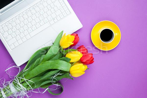 Beker koffie tulpen notebook violet business Stockfoto © Massonforstock