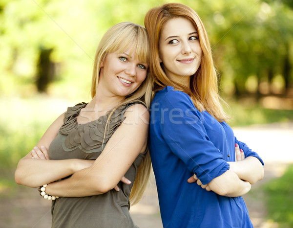 Two girls in the park. Stock photo © Massonforstock