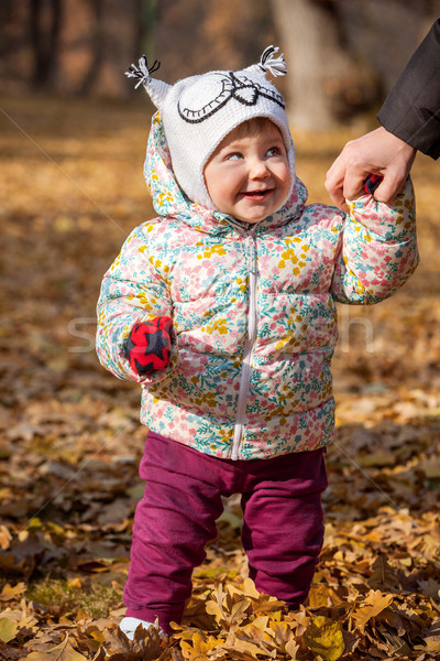 The little baby girl standing in autumn leaves Stock photo © master1305