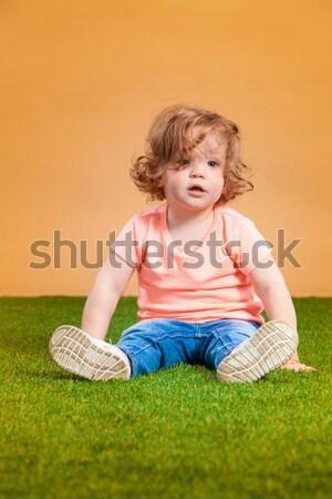 Een cute oranje grappig vergadering Stockfoto © master1305