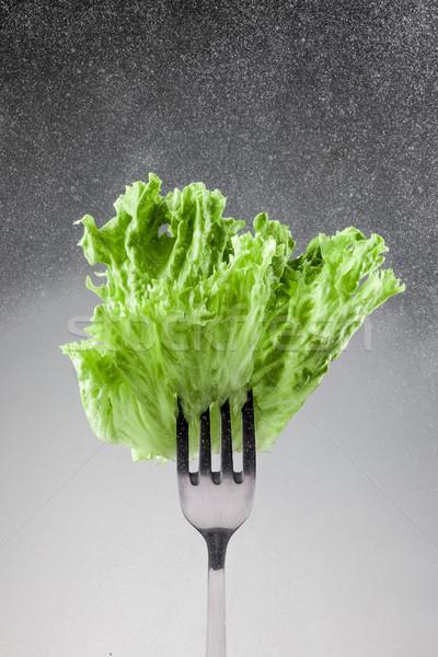 Verde lechuga hojas tenedor gris hoja Foto stock © master1305