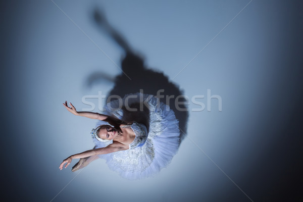 Portrait of the ballerina in ballet tatu on blue background Stock photo © master1305
