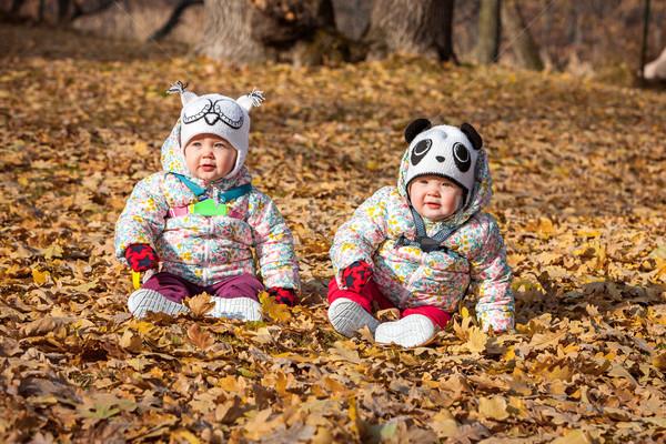 Kettő kicsi lánycsecsemők ül őszi levelek lány Stock fotó © master1305
