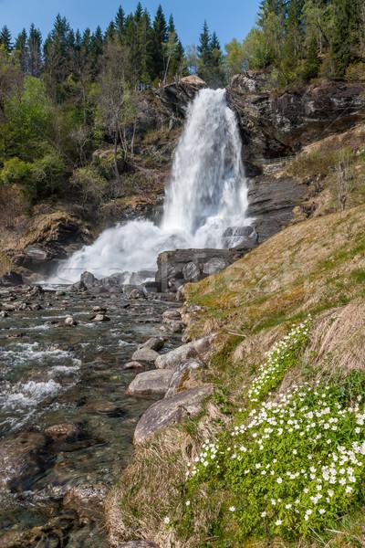 Cascata Norvegia montagna panorama presto primavera Foto d'archivio © master1305