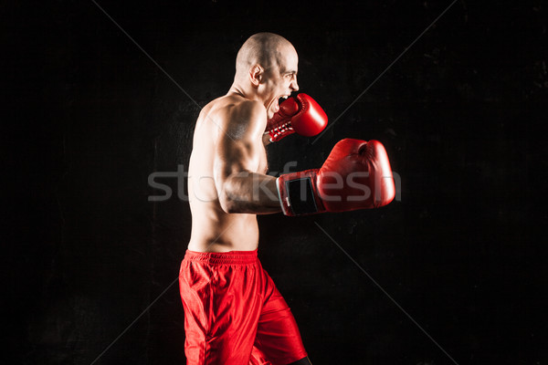 Genç kickboks siyah genç erkek atlet Stok fotoğraf © master1305