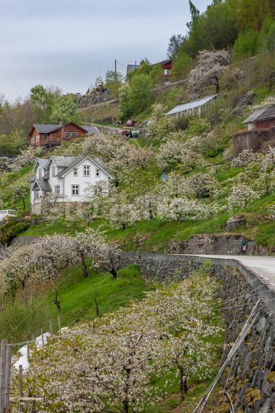 Landschap bergen dorp noors voorjaar huis Stockfoto © master1305