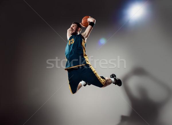 Retrato pelota gris estudio Foto stock © master1305