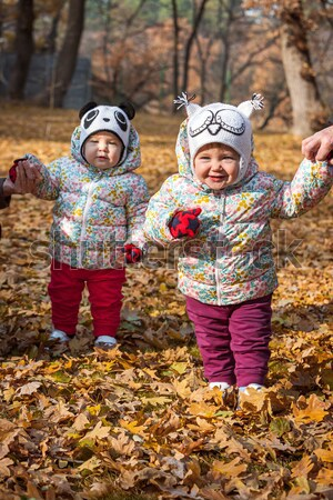 The two little baby girls standing in autumn leaves Stock photo © master1305