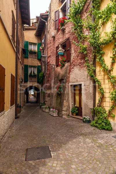 Charakteristisch italienisch Italien Blumen Gebäude Garten Stock foto © master1305