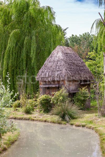 Küçük kulübe çatı Afrika gökyüzü ev Stok fotoğraf © master1305