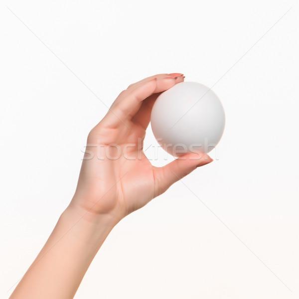 The female hand holding white blank styrofoam ball  Stock photo © master1305
