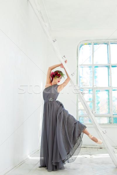 美しい バレリーナ ポーズ 長い グレー ドレス ストックフォト © master1305