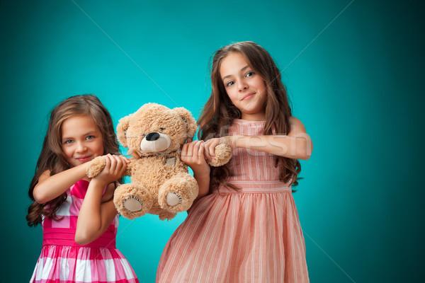два Cute синий мишка девушки Сток-фото © master1305