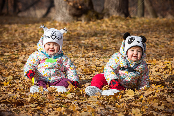 The two little baby girls sitting in autumn leaves Stock photo © master1305