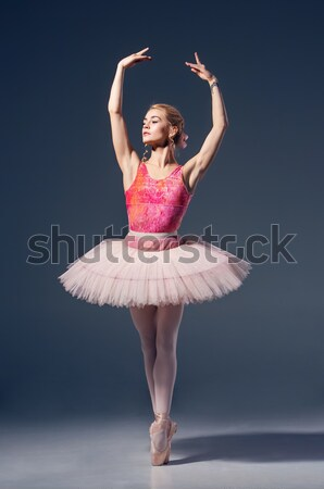 Portrait ballerine ballet posent gris Photo stock © master1305