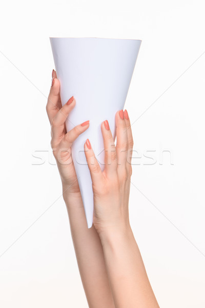 The white cone in the  female hands on white background Stock photo © master1305