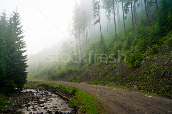Mooie pine bomen bergen groene rivier Stockfoto © master1305