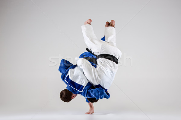 The two judokas fighters fighting men Stock photo © master1305